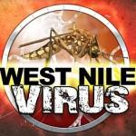 Sospensione West Nile Virus